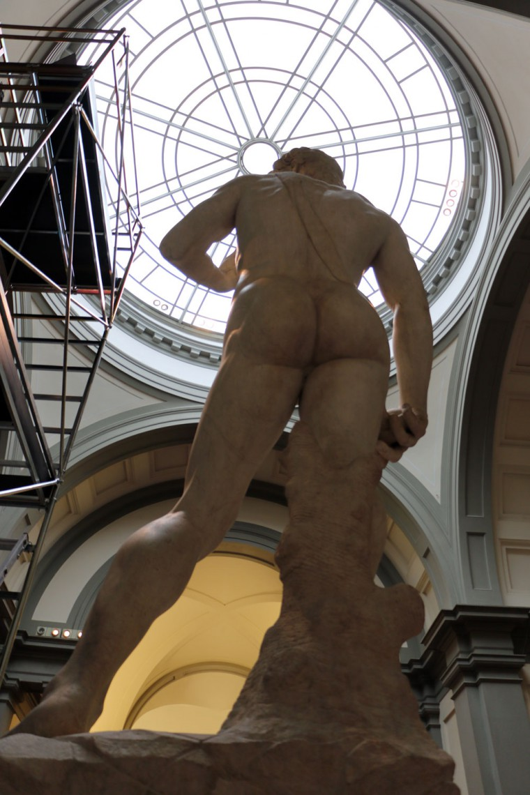 david-back-view